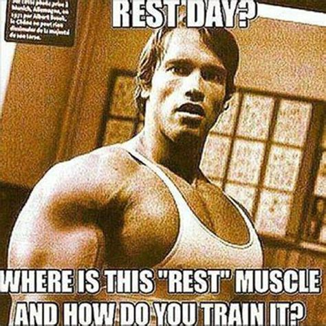 Gym Rest Day Meme - should i take protein on rest days page 2