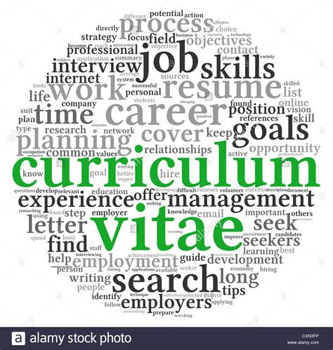 curriculum vitae cv concept in word tag cloud on white