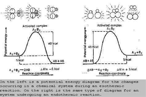 function of enzymes substrate active site activation energy