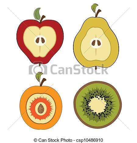 imagenes de uñas pintadas ala mitad fruta corte aislado art 237 culos mitad vector descarga