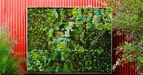 Vertical Garden Succulent Wall Panels Garden And Farms Vertical Succulent Panel Garden