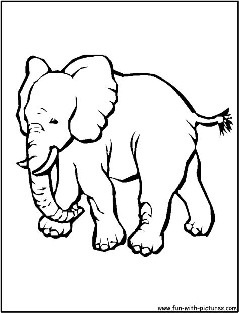 asian elephant coloring page sian elephant colouring pages