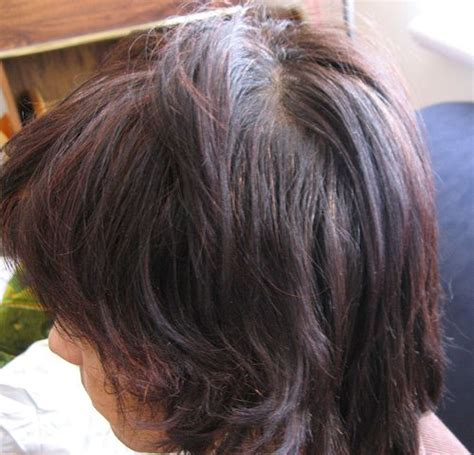 ideas for grey roots as a brunette the 25 best gray hair transition ideas on pinterest