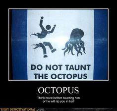 Octopus Meme - 1000 images about memes on pinterest funny memes bad