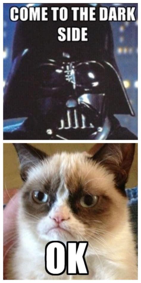 Grumpy Cat Coma Meme - 25 best ideas about funny grumpy cats on pinterest