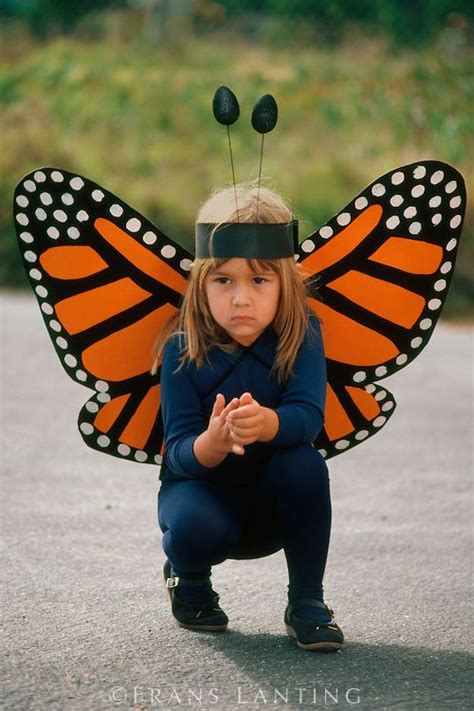 Handmade Butterfly Costume - monarch butterfly costume school daze