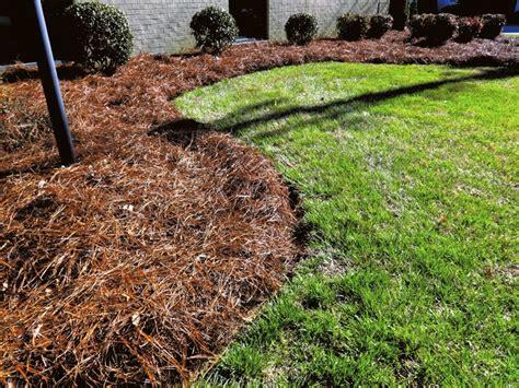 Landscape Mulch Pictures Home Improvement Fixes For Your Landscape