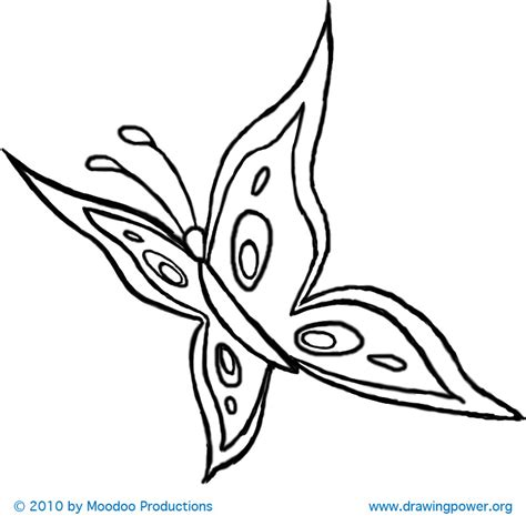 How To Draw A Butterfly How To Draw Coloring Pages