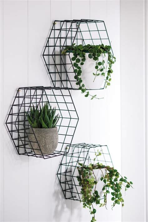 easy apartment plants best 25 plant decor ideas on pinterest house plants