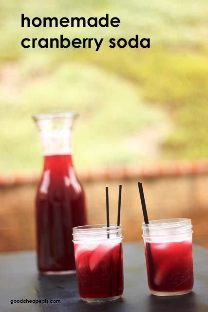 Handmade Soda - cranberry soda
