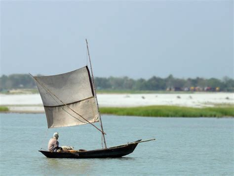 boat basin wiki padma river wikipedia