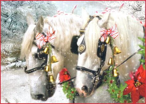 horse christmas cards horse cards horse gifts