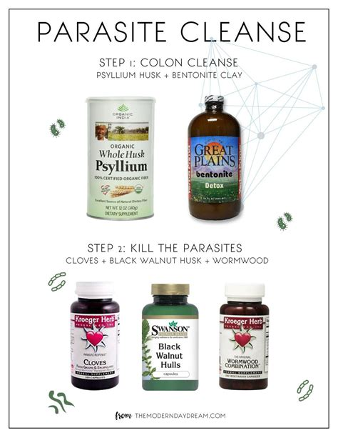 Amish Detox Recipe by Parasite Cleanse Recipe Dandk Organizer