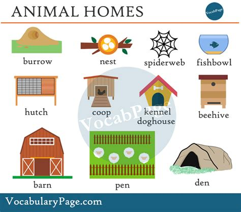 animal homes images