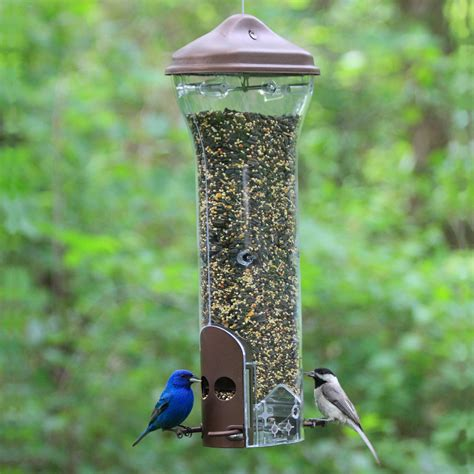 squirrel proof bird feeder tractor supply
