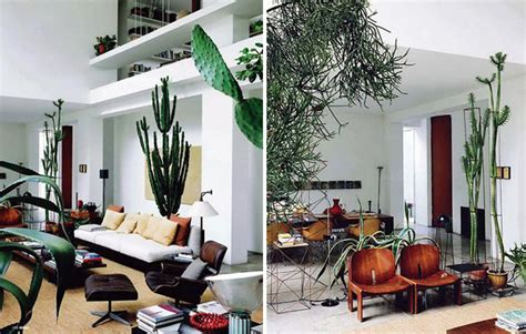 Kitchen Radiators Ideas 17 Indoor Cactus Gardens Home Design And Interior