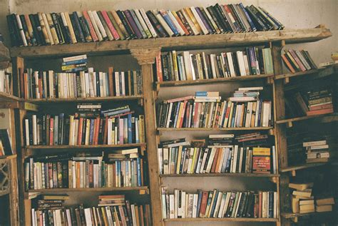 White Bookcase Bed Book Lovers Never Go To Bed Alone Aka The Book Rec Post