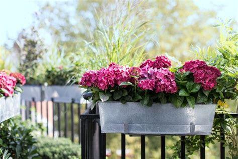 fiori per vasi da balcone fioriera da balcone vasi da giardino fioriera materiale
