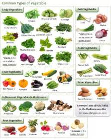 25 best list of vegetables ideas on pinterest low carb vegetables list vegetables list and