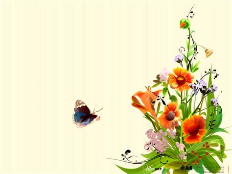 imagenes de rosas minimalistas pantalla de mariposas wallpapers de mariposas fondos de