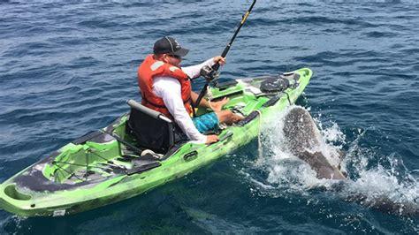 giant squid attacks fishing boat watch shark flip over kayaker cnn video