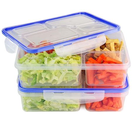 Divided Bento Lunch Containers Crystalandcomp Com