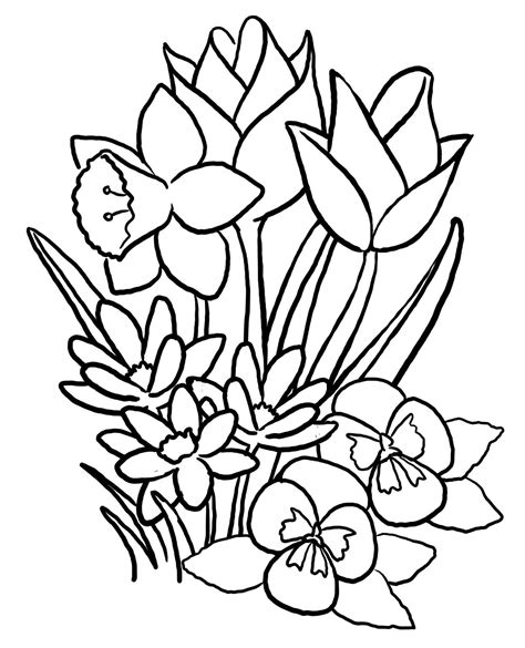 black and white coloring pages of flowers spring coloring pages printable spring coloring pages