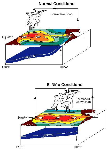 diagram of el nino noaa pmel tao what is an el nino enso