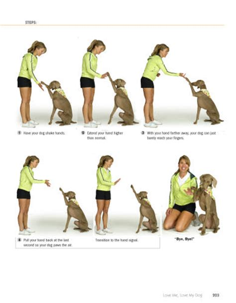 how to dogs tricks 101 tricks step by step activities to engage challenge and bond with your