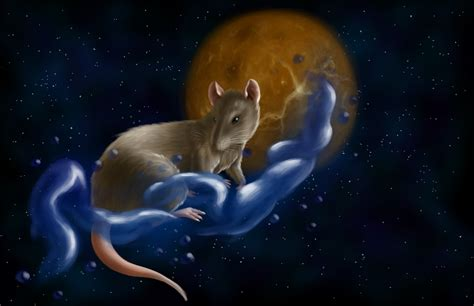 chinese zodiac element of water rat by verulence on