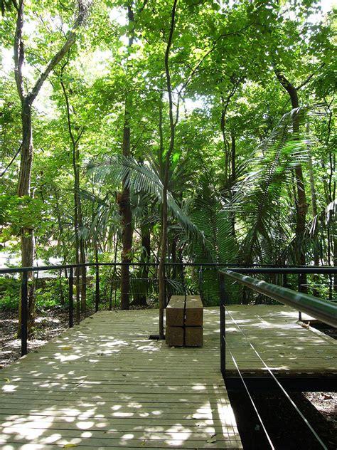 jardin medellin file jardin botanico sendero medellin jpg wikimedia commons