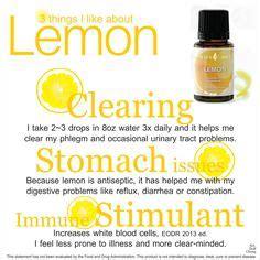 Lemon Detox Diarrhea by Yleo Cleansing Detoxing Fasting On