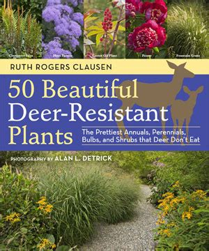 notes from the meadow user friendly deer resistant plant notes from the meadow more on deer resistant plants