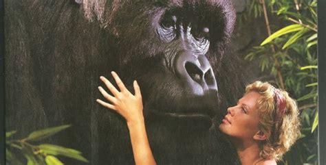 film one day online subtitrat romana gorila joe film online gratis subtitrat in romana