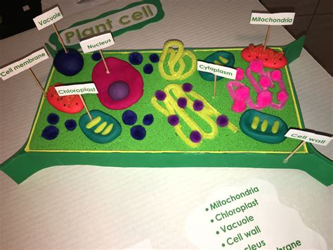 3d Model Ideas
