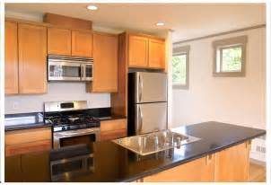 Kitchen Cabinets On A Budget by How To Redoing A Kitchen On A Budget Modern Kitchens