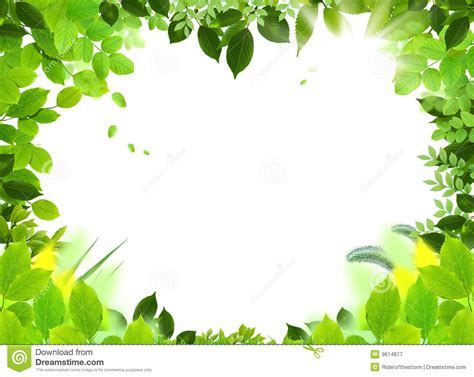 nature template frame and template stock illustration image of