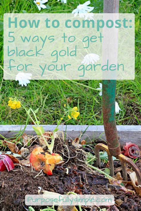 how to compost in your backyard 100 how to start a compost bin in your backyard how