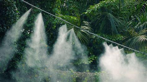 mist system irrigation youtube