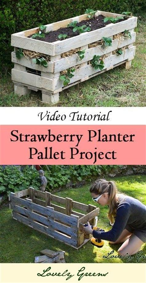 How To Make A Strawberry Planter Out Of A Pallet by Learn How To Make A Strawberry Planter Out Of A Single