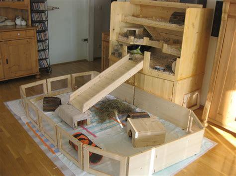meerschweinchen wohnung umzug vom kinderzimmer ins wohnzimmer meerschweinchen