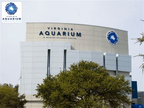 20 great restaurants virginia beach vacation guide virginia marine science center giant screen 3d theater