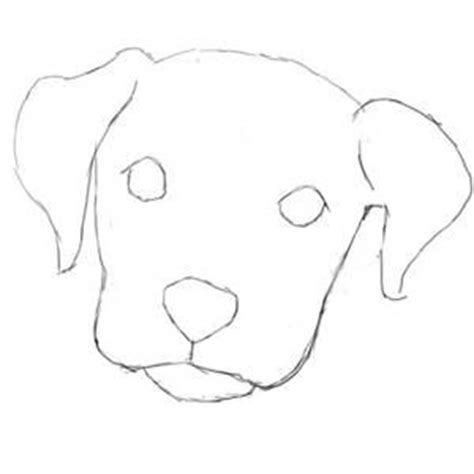 easy to draw puppy how to draw a easy yahoo search results yahoo image search results