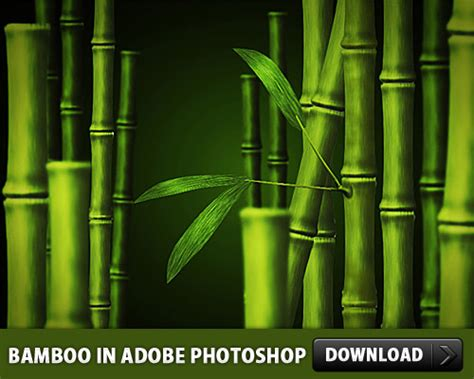 Free Bamboo Psd Made In Adobe Photoshop Download Download Psd Adobe Photoshop Psd Templates Free