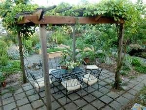 Vine Covered Pergola by Pergola Amp Patio Update Hip Digs