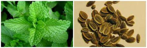 pancia gonfia alimenti da evitare pancia gonfia dopo mangiato rimedi e quali alimenti