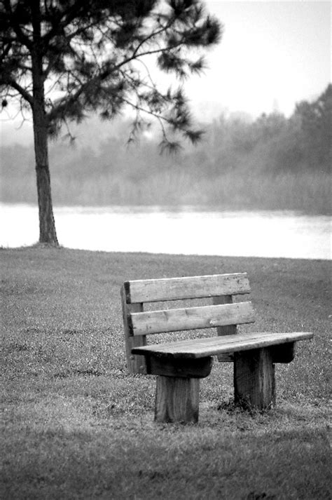 empty bench empty bench by manlarr on deviantart