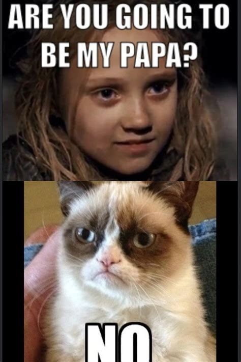 Miserable Cat Meme - grumpy cat les mis memes