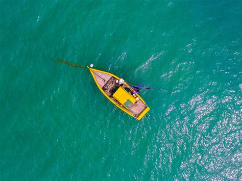 boat view images free images sea ocean boat wave oar paddle vehicle