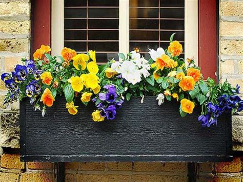 win with flower 19 simply breathtaking flower box ideas to accessorize